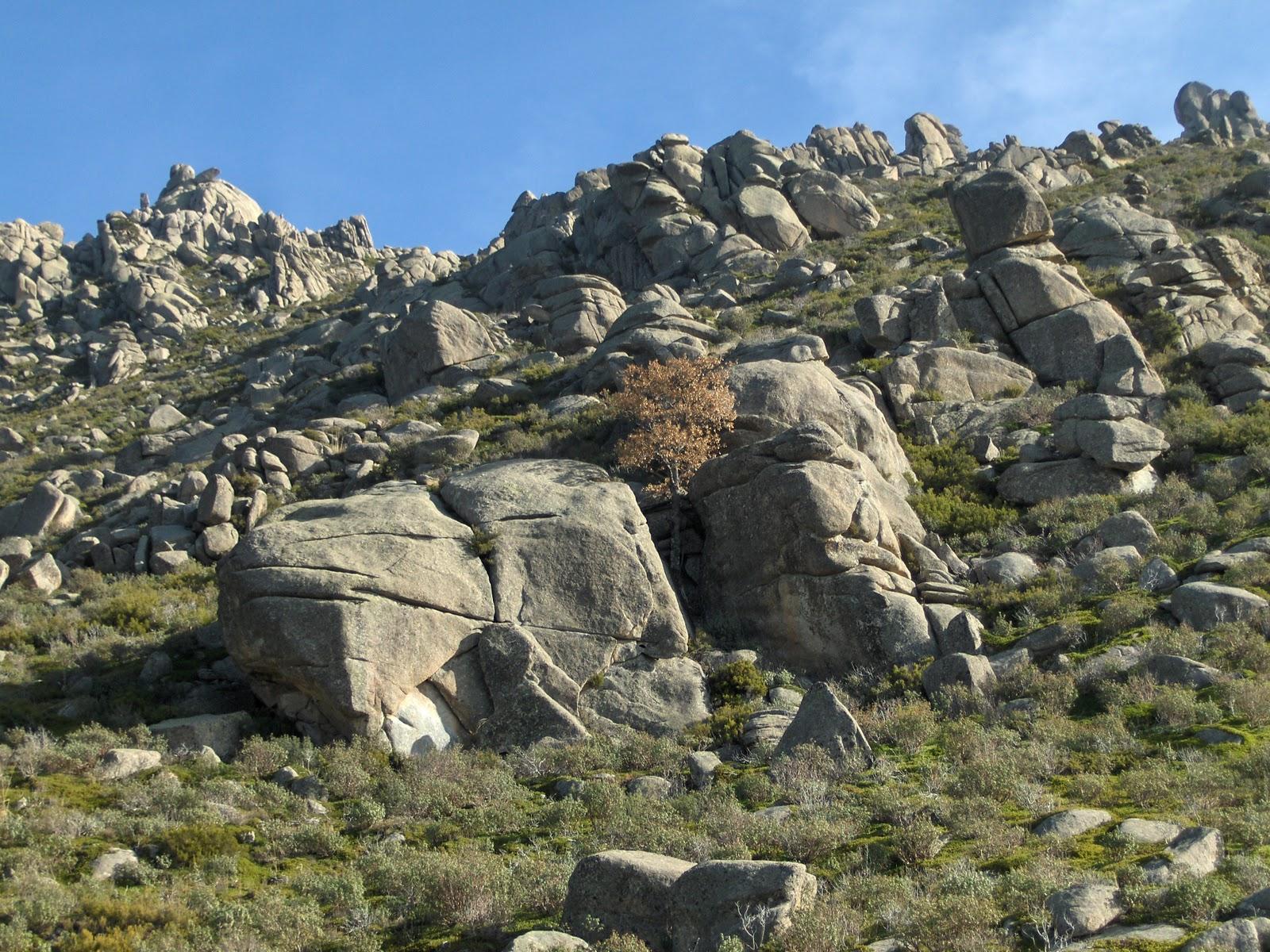 Geomorfolog a 4 eso modelado gran tico for Que es el granito