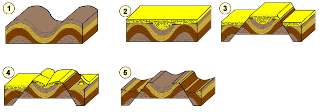 Apalachense